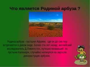 Что является Родиной арбуза ? Родина арбуза - пустыни Африки, где он до сих п