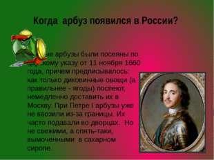 Когда арбуз появился в России? Первые арбузы были посеяны по царскому указу о