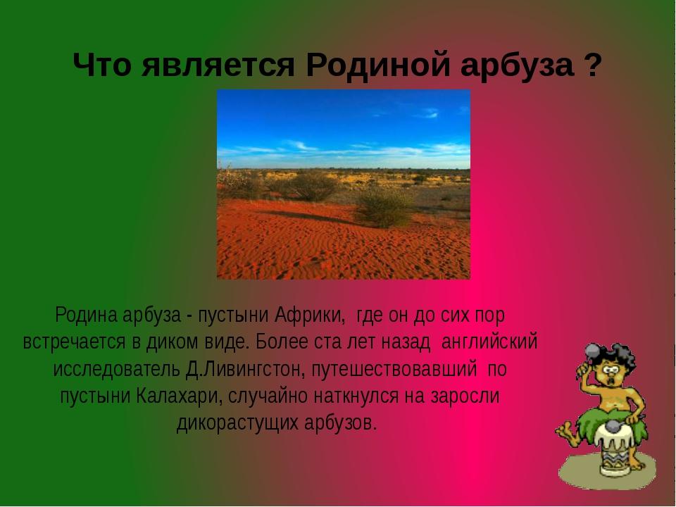 Что является Родиной арбуза ? Родина арбуза - пустыни Африки, где он до сих п...
