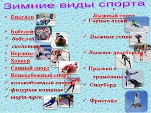 Лыжный спорт Биатлон Бобслей: бобслей скелетон Керлинг Хоккей Санный спорт К