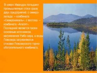 В озеро Имандра попадают промышленные стоки сразу двух предприятий: с северо