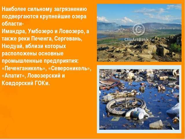 Наиболее сильному загрязнению подвергаются крупнейшие озера области- Имандра,...