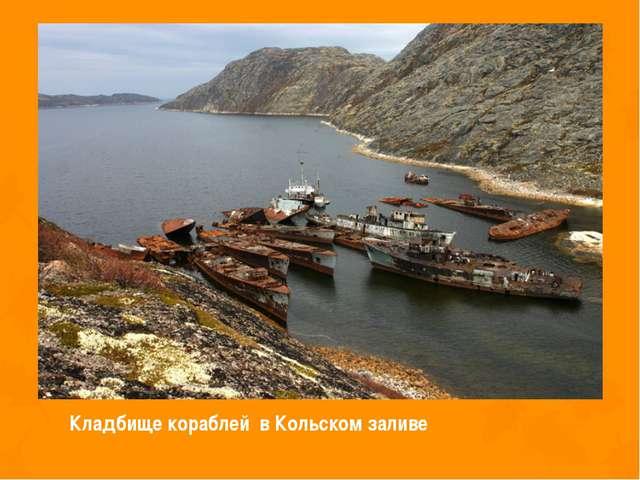 Кладбище кораблей в Кольском заливе