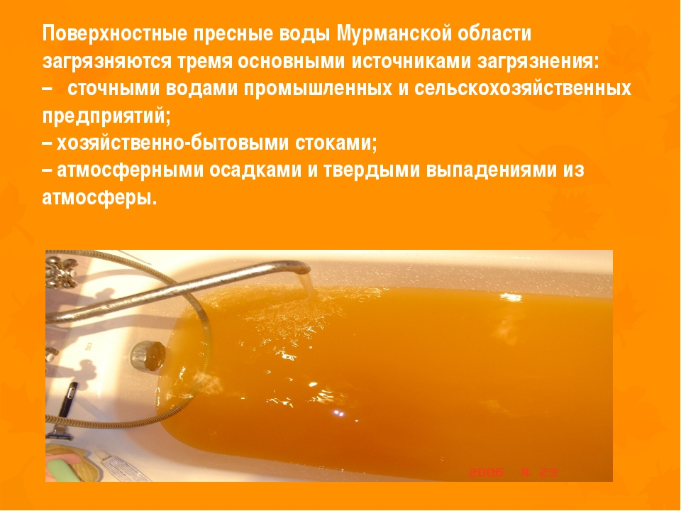 Поверхностные пресные воды Мурманской области загрязняются тремя основными ис...
