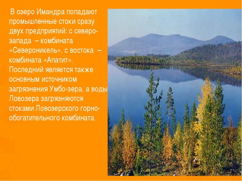 В озеро Имандра попадают промышленные стоки сразу двух предприятий: с северо...
