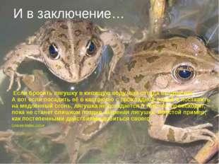 Если бросить лягушку вкипящую воду, она оттуда выпрыгнет. Авот если посади