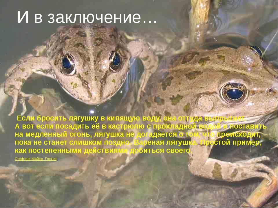 Если бросить лягушку вкипящую воду, она оттуда выпрыгнет. Авот если посади...