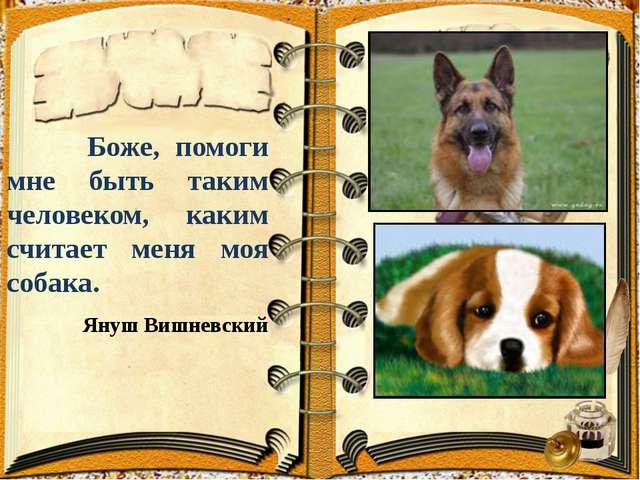 Боже, помоги мне быть таким человеком, каким считает меня моя собака. Януш В...