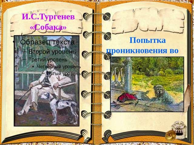 И.С.Тургенев «Собака» Попытка проникновения во внутренний мир собаки