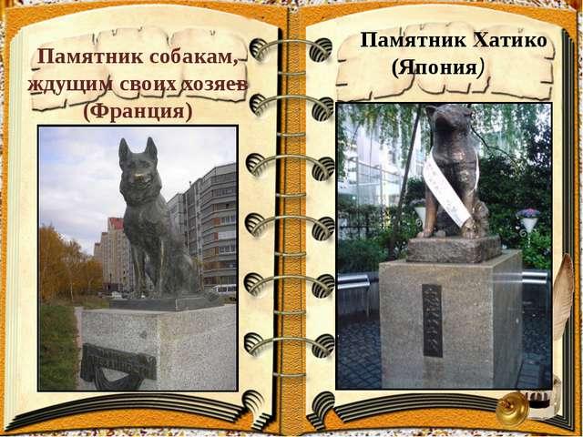 Памятник собакам, ждущим своих хозяев (Франция) Памятник Хатико (Япония)