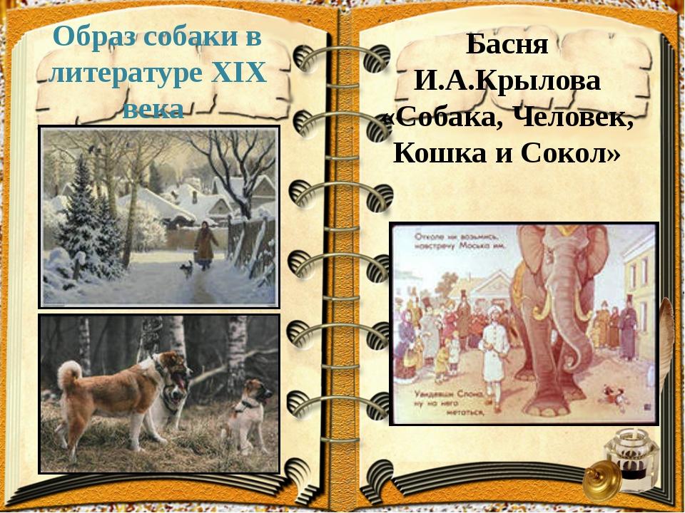 Образ собаки в литературе XIX века Басня И.А.Крылова «Собака, Человек, Кошка...