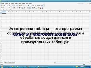 Окно ЭТ Microsoft Excel 2003 Электронная таблица — это программа обработки чи