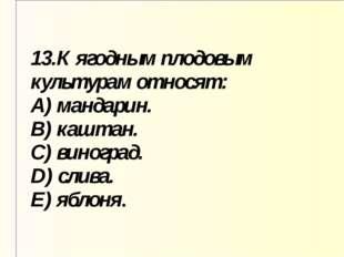 13.К ягодным плодовым культурам относят: A) мандарин. B) каштан. C) виноград.