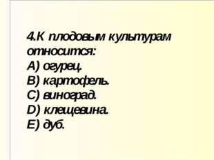4.К плодовым культурам относится: A) огурец. B) картофель. C) виноград. D) кл