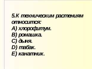5.К техническим растениям относится: A) хлорофитум. B) ромашка. C) дыня. D) т