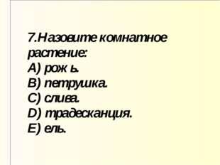 7.Назовите комнатное растение: A) рожь. B) петрушка. C) слива. D) традесканци