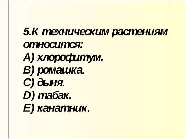 5.К техническим растениям относится: A) хлорофитум. B) ромашка. C) дыня. D) т...