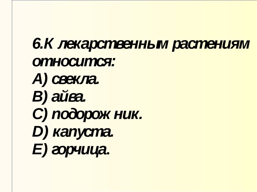 6.К лекарственным растениям относится: A) свекла. B) айва. C) подорожник. D)...
