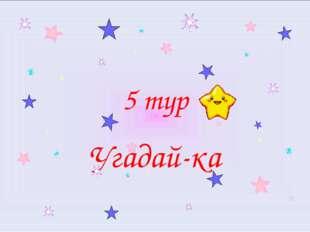 5 тур Угадай-ка
