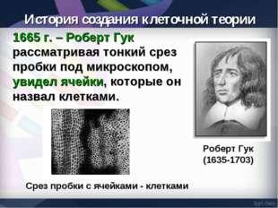 1665 г. – Роберт Гук рассматривая тонкий срез пробки под микроскопом, увидел