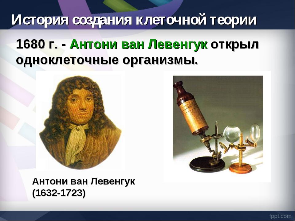 История создания клеточной теории 1680 г. - Антони ван Левенгук открыл однокл...