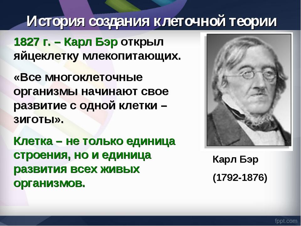 1827 г. – Карл Бэр открыл яйцеклетку млекопитающих. «Все многоклеточные орган...