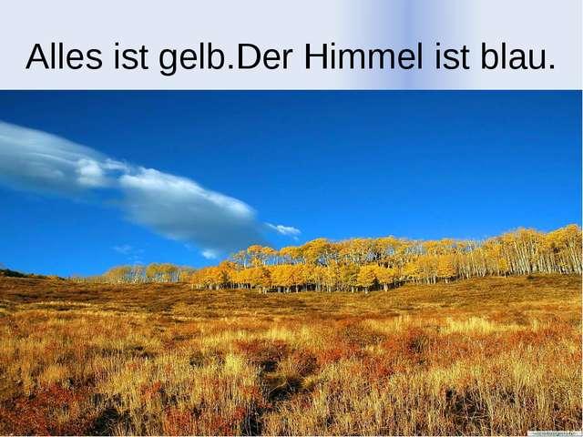 Alles ist gelb.Der Himmel ist blau.