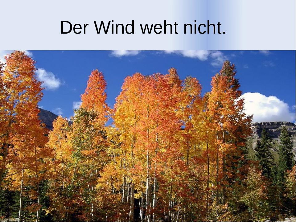 Der Wind weht nicht.