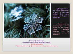 Not a single similar one. Amazing pictures of snowflakes taken closeup. Ни од