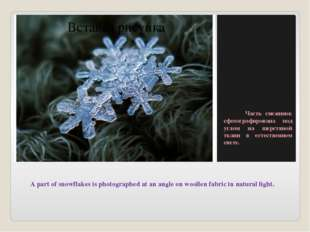 A part of snowflakes is photographed at an angle on woollen fabric in natura