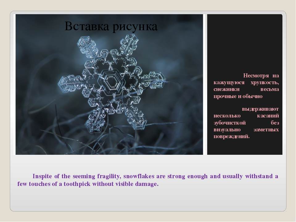 Inspite of the seeming fragility, snowflakes are strong enough and usually w...