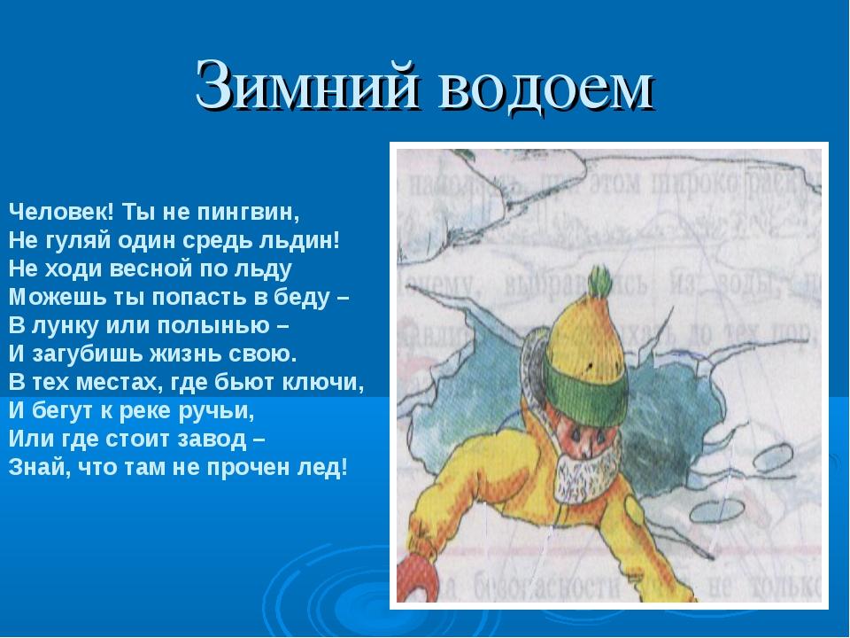 Зимний водоем Человек! Ты не пингвин, Не гуляй один средь льдин! Не ходи весн...