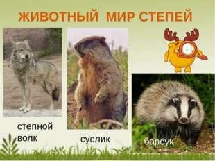 Особенности животного Мира Степной зоны: 1. Окраска под цвет окружающей среды