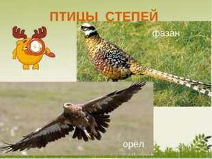 Животные, занесённые в Красную книгу : Пеликан Краснозобая казарка Зайчик зе