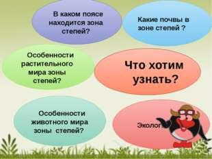 Что хотим узнать? В каком поясе находится зона степей? Какие почвы в зоне ст