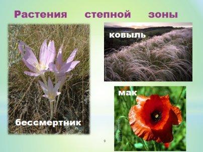 hello_html_94071e9.jpg