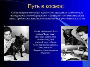 «Моей любимицей была собака Чернушка. Я ее сама нашла. Она полетела под этой