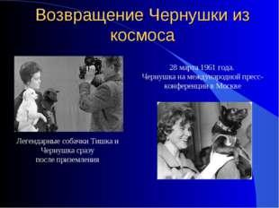 28 марта 1961 года. Чернушка на международной пресс-конференции в Москве Возв
