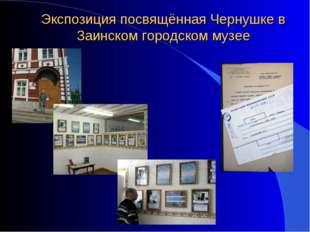 Экспозиция посвящённая Чернушке в Заинском городском музее