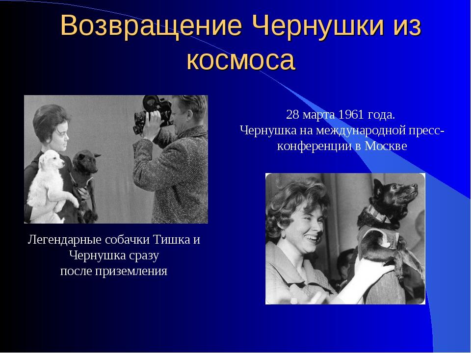 28 марта 1961 года. Чернушка на международной пресс-конференции в Москве Возв...