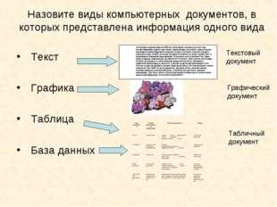 Назовите виды компьютерных документов, в которых представлена информация одно