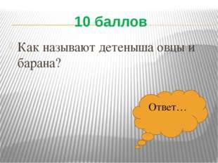 10 баллов Как называют детеныша овцы и барана? Ответ…
