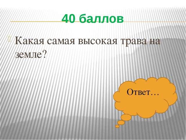 40 баллов Какая самая высокая трава на земле? Ответ…
