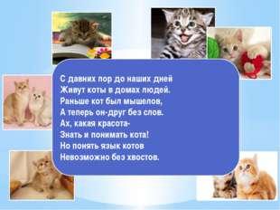 С давних пор до наших дней Живут коты в домах людей. Раньше кот был мышелов,