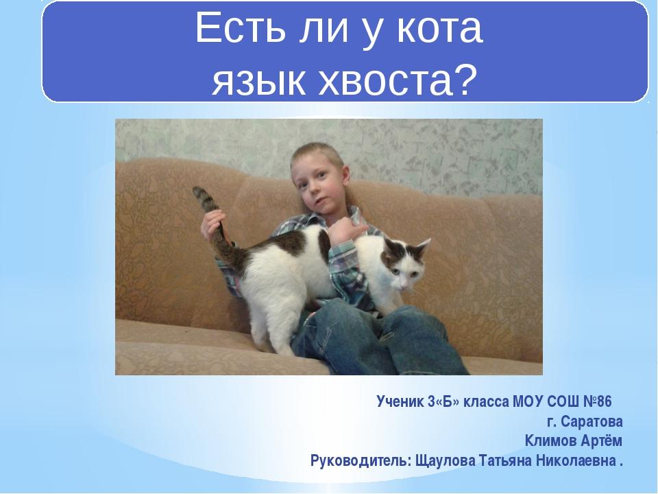 Есть ли у кота язык хвоста? Ученик 3«Б» класса МОУ СОШ №86 г. Саратова Климов...
