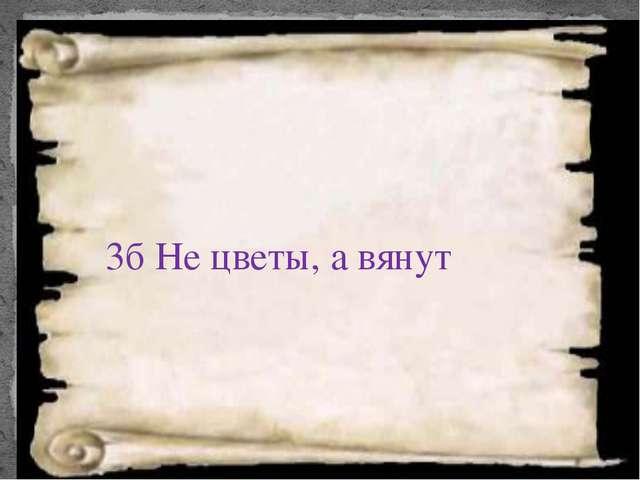 3б Не цветы, а вянут