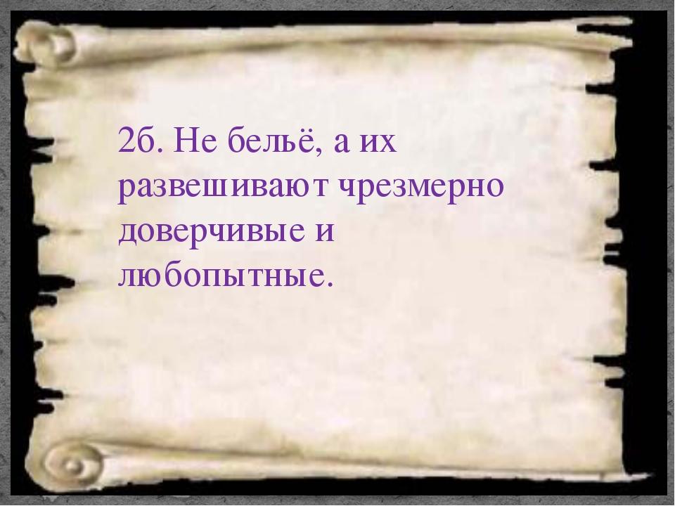 2б. Не бельё, а их развешивают чрезмерно доверчивые и любопытные.