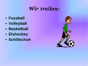 Wir treiben: Fussball Volleyball Basketball Eishockey Schlitschuh