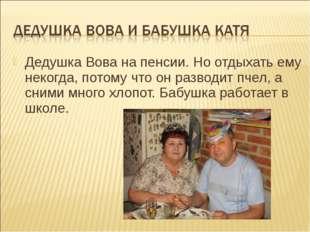 Дедушка Вова на пенсии. Но отдыхать ему некогда, потому что он разводит пчел,