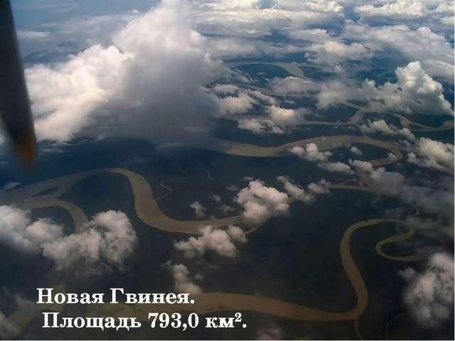 Новая Гвинея. Площадь 793,0 км².